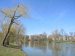 Im Volkspark Mariendorf, Berlin, NGID1289717534 (naturgucker.de) Tags: naturguckerde cwolfgangkatz 915119198 92636685 865714930 ngid1289717534