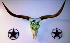 Longhorn decorated skull: culture of death Texas style in 2014 (Gilbert Mercier) Tags: dinner skull texas kitsch meat americana longhorn climatechange greasyspoon heartdisease animalcruelty lonestarstate biblebelt meateater cattleranch cultofdeath coloncancer texaspanhandle methanegas cardiovasculardisease photobygilbertmercier