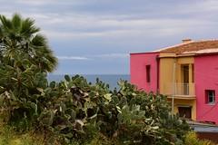 Sciacca, Sicily, May 2016 535 (tango-) Tags: italy italia sicilia sizilien sciacca