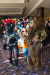 _DSC0561 (Acrufox) Tags: midwest furfest 2015 furry convention december hyatt regency ohare rosemont chicago illinois acrufox fursuit fursuiting mff2015