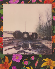 Midsection (benjaflynn) Tags: flowers sky reflection rain metal rural polaroid puddle outside outdoors countryside spring construction pattern shadows open pipes shapes rusty artificial dirty next plastic powerlines dirt manmade expired filthy uphill limitededition crusty instantcamera pola trespassing beside rainwater construct layingdown expiredfilm unused disassembled plasticlens foldingcamera specialedition fixedfocus offlimits instantfilm thecountry scannedfilm primelens polaroidfilm polalove rurality polaroidjobpro2 fixedfocallength jobproii epsonperfectionv500 polaweek coloredframe theimpossibleproject benseidelman impossiblefilm poisonedparadise hibiscusframe polaroid116mmlens exp1215 polaweek2016
