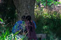L'amour est votre nature (- Ali Rankouhi) Tags: tree love moments heart indian couples silence