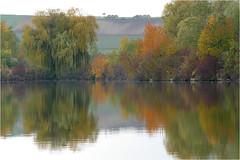 Herbst am Teich 23 (lady_sunshine_photos) Tags: austria europa herbst teich niedersterreich oase weinviertel herbstfrbung nexing