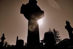ballinasloe_139 (HomicidalSociopath) Tags: ireland cemetery architecture spring nikon crosses april ballinasloe d60