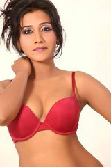 Bollywood Actress NISHA YADAV-HOT AND SEXY IMAGES-SET-3 (41)