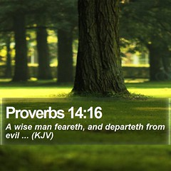 Daily Bible Verse - Proverbs 14:16 (daily-bible-verse) Tags: religion devotion motivational godisgood christcentered