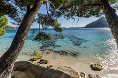 Mallorca beach (hjuengst) Tags: blue beach water strand bay spain turquoise urlaub wideangle pines blau mallorca spanien mediterraneansea bucht weitwinkel trkis mittelmeer capformentor pinien calaformentor