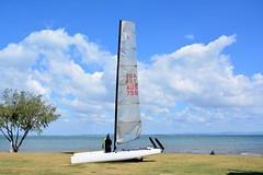 DSC_0006 (LoxPix2) Tags: boat sailing brisbane catamaran lox aclass no755 loxpix boyermarkiv