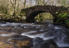 Packhorse Bridge. (maddiver58) Tags: river spring brigde packhorse