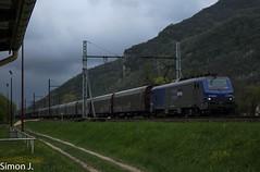 Train d'eau : Ambérieu - Publier (bb_17002) Tags: station train de gare railway route locomotive fret extérieur chemin fer véhicule ambérieu bb27000 baché publier torcieu régiorail