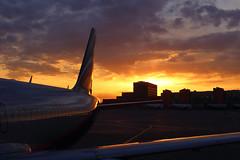 Dawn (Oleg Botov) Tags: sky night plane sunrise dawn airport aircraft aviation jet apron airbus su spotting afl airliners a320 avia aeroflot jetliner svo  planespotting   sheremetyevo   avgeek  uuee  planeporn crewlife slavniyoleg