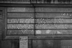 All you need is love (misterblue66) Tags: brussels bw butterfly noiretblanc bruxelles nb bn papillon streetphoto d610