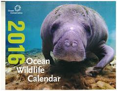 oceanCalendar (armadil) Tags: calendar freecycle