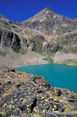 Lago sup di Laures 02 (maurizio.broglio) Tags: lago di monte laures superiore emilius brissogne