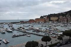 Santa Margherita - veduta del porto (gio.pas_sm) Tags: santa panorama riviera liguria porto margherita ligure