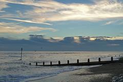 20131110_2218 (EJ Bergin) Tags: sea beach sussex evening worthing seagull groyne tidemarker lumixtz10