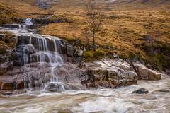 Waterfall, Glen Etive (Sarah-86) Tags: tree river scotland waterfall highland glenetive nikond810 nikonafs2485vr