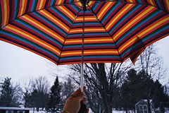 (enowak30) Tags: cold umbrella photography colorful colorpop