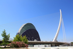 Ciudad de las Artes y las Ciencias, Valencia (Spain) (Kristel Van Loock) Tags: city travel bridge valencia architecture spain arquitectura espanha europa europe ponte espana pont brug espagne architettura santiagocalatrava spanien valence spagna architectuur spanje espagna ciudaddelasartesylasciencias spagne citytrip lagora felixcandela cityofartsandsciences ciutatdelesartsilesciències stadtderkünsteundderwissenschaften citédesartsetdessciences pontdelassutdelor stadvankunstenwetenschap cidadedasartesedasciências complessoarchitettonico lacittàdelleartiedellescienze elpontdelassutdelor ilpontdelassutdelor