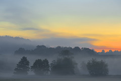 MIST AND MORN  - (Selected by GETTY IMAGES ESP) (DESPITE STRAIGHT LINES) Tags: morning cloud brick nature beauty sunrise river landscape dawn countryside kent am nikon flickr day railway poppy poppies getty naturalbeauty mothernature lullingstone goldenhour gettyimages d800 firstlight riverdarent eynsford coquelicots poppyfield thegoldenhour paulwilliams lowlightphotography outdoorphotography sunrisephotography nikon2470mm nikkor2470mm nikond800 eynsfordvillage despitestraightlines eynsfordkent theeynsfordviaduct batballstation sevenoaksrailway lullingstonevillage sunriseovereynsford despitestraightlinesatgettyimages gettyimagesesp