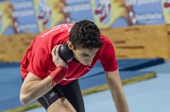 Massimiliano Sileoni