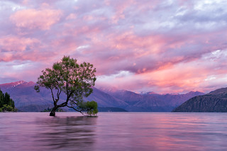 Watercolour Wanaka