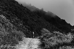 Hacia el Bartolo (J.Gargallo) Tags: blackandwhite bw espaa byn blancoynegro canon eos blackwhite spain camino bicicleta benicassim bartolo castelln comunidadvalenciana desiertodelaspalmas eos450d 450d castellndelaplana canon450d canonefs18200