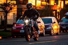 Duke 390 (jetcitygrom) Tags: seattle sunset canon volkswagen washington helmet twin duke ktm motorbike alki motorcycle biker standard rider 390 70d