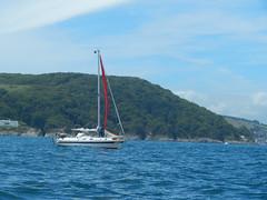Plymouth-201506-57-SailingBoat (Tony J Gilbert) Tags: macro marine underwater plymouth diving scylla jameseaganlayne nikond300 handdeeps wwwdivingplymouthcom ceeking hilseapointrocks