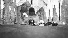 sacrifice (berberbeard) Tags: street blackandwhite germany deutschland photography fotografie 28mm hannover schwarzweiss manuallens minoltamd monchrom itsnotatrick berberbeard berberbeardwordpresscom ilce7m2