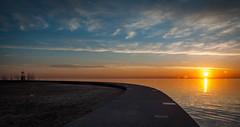 _DSC0128.jpg (art_photo) Tags: chicago lakeshoredrive lincolnpark northavebeach