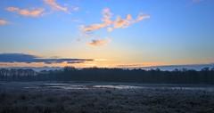 Limburg sunrise (M a u r i c e) Tags: morning sky sunlight holland netherlands sunrise frost wideangle dew bluehour limburg efs1022mm ultrawidezoom