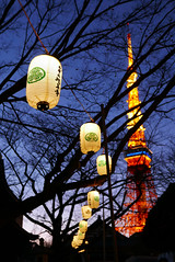 Lanterns Zojo-ji  Tokyo (Julien Mailler) Tags: world travel light tree tower japan night temple japanese tokyo julien religion lanterns kansai japon zojoji budhist japonais nationalgeographic budhism boudhisme lovelyphotos boudhiste jules1405 unseenasia earthasia mailler tokyote