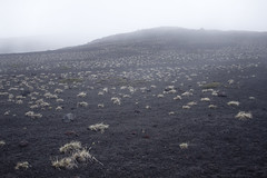 Las Heladas (vlΛиco iиvierиo) Tags: chile volcano outdoor andes sur cordillera volcan osorno