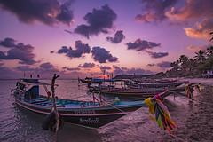 The Golden Hour (Andrea Bassetti) Tags: pink sunset sea summer cloud beach relax thailand island boat calm kohsamui samui holliday koh vanillasky surise