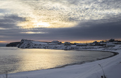 Golden water at the beach (Danny VB) Tags: morning winter sea snow seascape canada beach water sunrise canon eos golden early hiver québec neige ef50mmf18ii 6d gaspésie percé