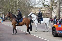 London 2016 (Moody Man) Tags: london st police palace mounted jamess 2016 160331 160330
