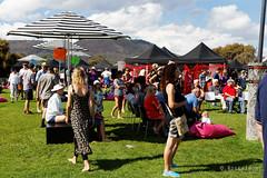 20160313-12-MONA Market mardi gras theme (Roger T Wong) Tags: people grass market lawn australia mona moma tasmania hobart mardigras stalls 2016 canonef24105mmf4lisusm canon24105 canoneos6d museumofoldandnewart rogertwong