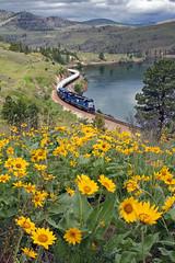 Springtime along the Flathead (Moffat Road) Tags: railroad train river montana mt curve mrl springtime 382 sd45 emd perma flatheadriver montanaraillink sd452m gastrain gaslocal mrl10thsubmrltenthsubdivision