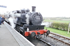 P4160106 (Steve Guess) Tags: uk england usa train kent tank railway loco steam gb locomotive eastsussex 30065 060t