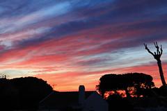 Coucher de soleil  Meco (hans pohl) Tags: trees portugal nature night cloudy arbres nuit meco sesimbra nuageux