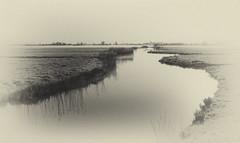 Mist in mono (Jorden Esser) Tags: bridge mist monochrome fog canal grassland vignette nederlandvandaag monochromemonday grainedfilm
