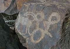 Petroglyphs / Blackrock Well Site (Ron Wolf) Tags: california archaeology circle nationalpark loop nativeamerican petroglyph anthropology shoshone rockart zoomorph bighornsheep deathvalleynationalpark coso numic