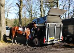 2016 Horses National (Steenvoorde Leen - 3.4 ml views) Tags: maarsbergen doorn utrechtseheuvelrug horses national 2016 landgoed netherlands event pferde militairy paarden springen cross horse sgw