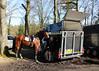 2016 Horses National (Steenvoorde Leen - 2.7 ml views) Tags: maarsbergen doorn utrechtseheuvelrug horses national 2016 landgoed netherlands event pferde militairy paarden springen cross horse sgw