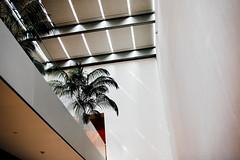 NYC: MoMA (danielledoepke) Tags: nyc newyorkcity trip vacation college lines museum architecture canon geometry moma museumofmodernart vsco t6i vscocam ddoepkephoto canont6i