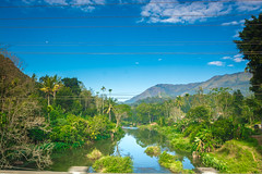 landscape of Kerala ([s e l v i n]) Tags: india green tea kerala greenery backwaters munnar teaestate allepy allapuzha greenearth backwatersofkerala keralatourism keralatravel allepybackwaters picturesofkerala selvin