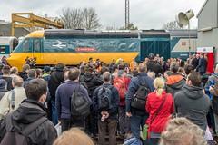 Sir Kenneth Grange (Nodding Pig) Tags: uk greatbritain england bristol railway depot locomotive hst openday 2016 brel class43 intercity125 dieselelectric 43002 stphilipsmarsh w43002 sirkennethgrange 201605022600101