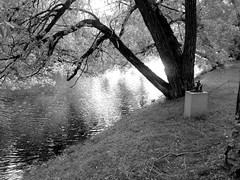 Statue in the park (josefinenylander) Tags: park city blackandwhite cute documentary