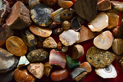Calke Abbey Collection Agates (maddpete) Tags: abbey collection agates calke